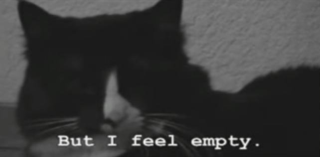 【猫動画】古いフランス映画のよう!?モノクロでクールな猫のつぶやきとは・・・!?