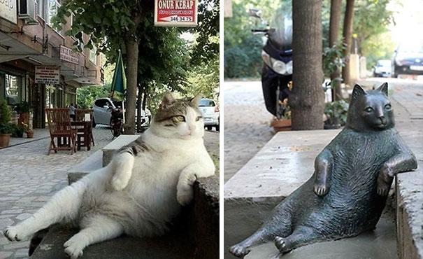 【猫ネタ】有名猫が銅像に!?1.7万人の署名を集めて銅像になったイスタンブールの猫とは・・・!?