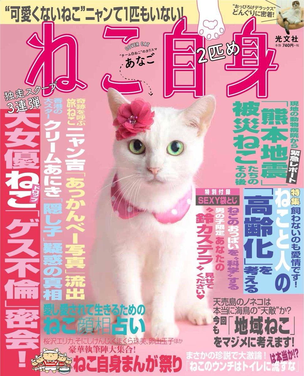 【猫ネタ】猫のゴシップ雑誌!?猫ネタでお腹いっぱいになりそうな猫雑誌「ねこ自身」とは・・・!?