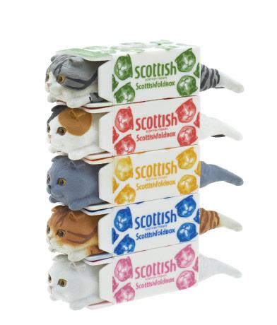 scotish_tissue01