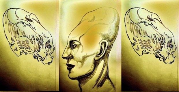craniuns