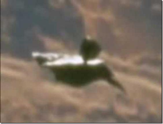 satelitealien3