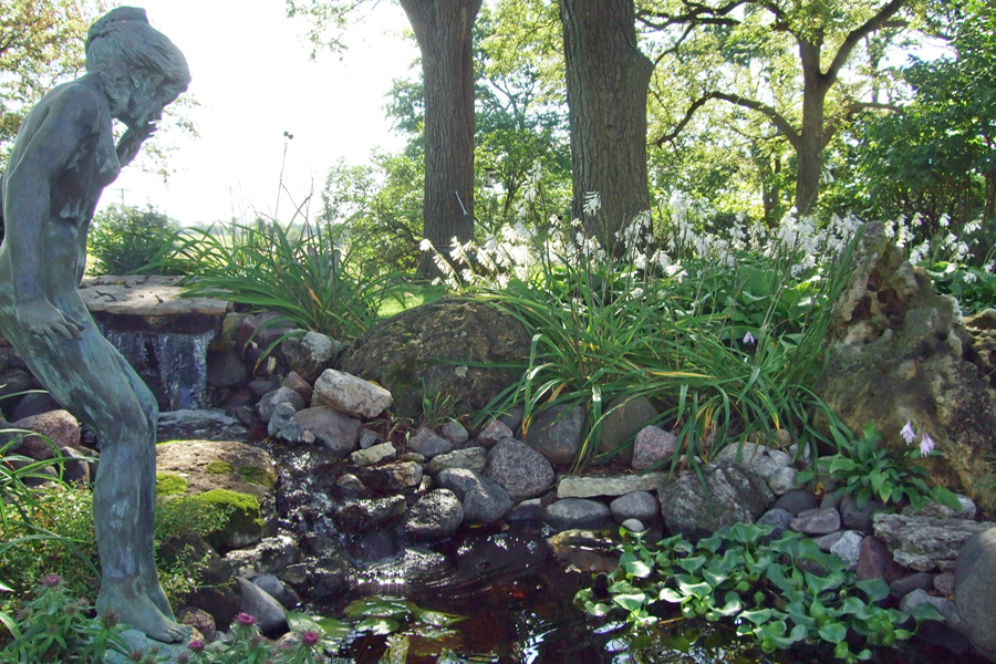 Ponds & Water Treatments