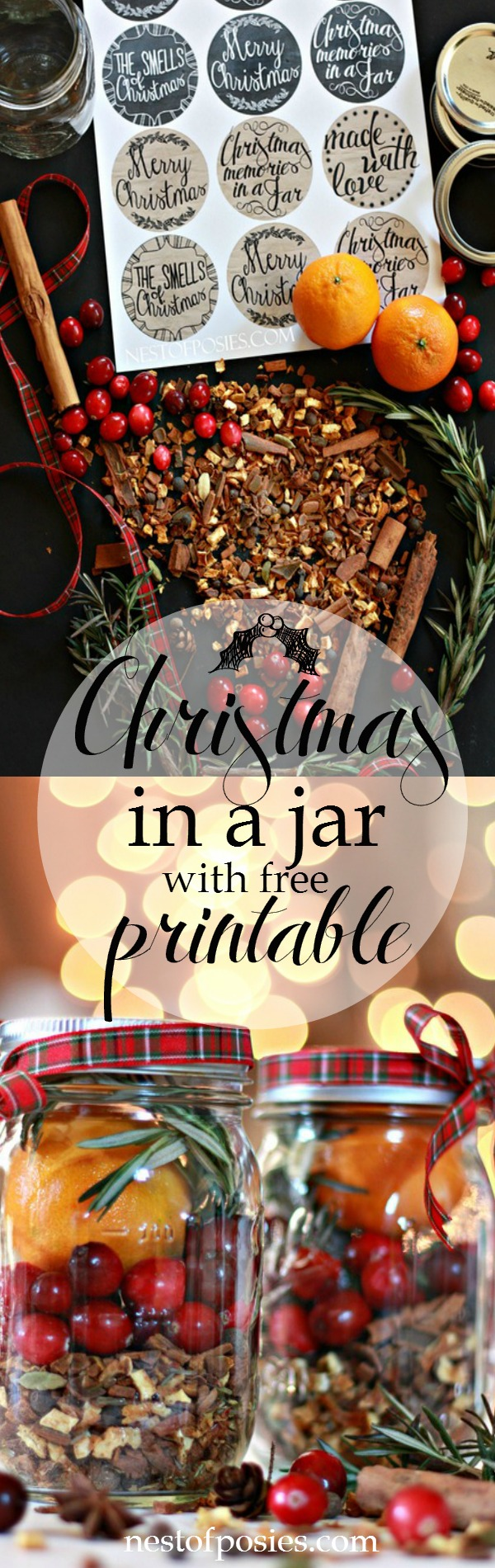 Christmas in a Jar with free printable. A beautiful gift made in minutes with supplies from the grocery store.