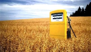 What? Biofuels are even more dangerous than Gasoline for Climate!