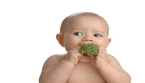 These are the 10 Best Foods for Your Baby!