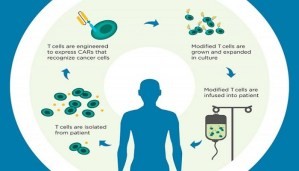 T-Cell therapy- Here are the remarkable Results!