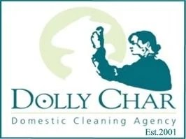 Dolly Char Domestic Cleaning Agency - Netmums