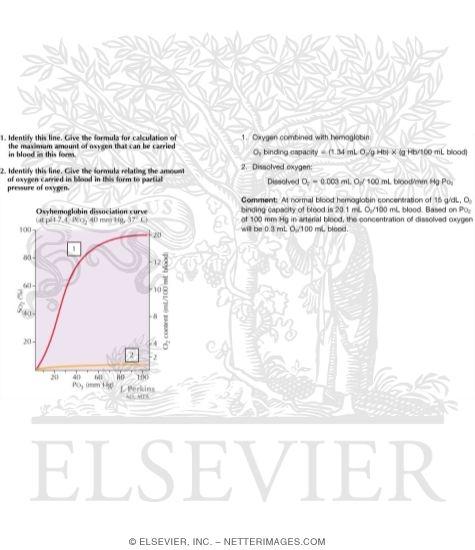 Oxyhemoglobin Dissociation Curves