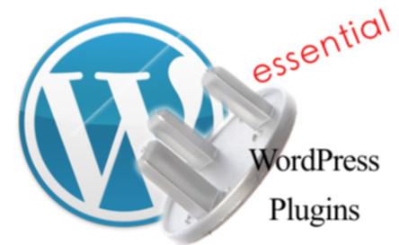 Essential WordPress Plugins in Monetizing Blog Experiment