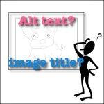 SEO: Image Alt Text vs Title
