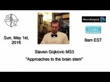 """HANGOUT  """"Approaches to the Brain Stem"""" with Slaven Gojkovic MD"""