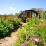 Reno's Biggest Little Pollinator Garden Selected as RSAR's Build A Better Block Project Winner