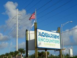Aquarium Encounters, Florida Keys