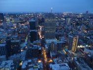 Top of Africa, Johannesburg