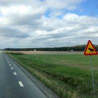 Mobile Internet in Sweden using a Prepaid 3G Data Sim Card