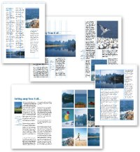 13 Graphic Design Page Layout Images - Graphic Design ...
