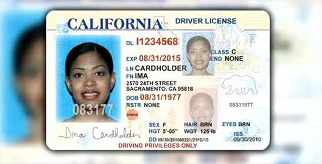 state id templates free