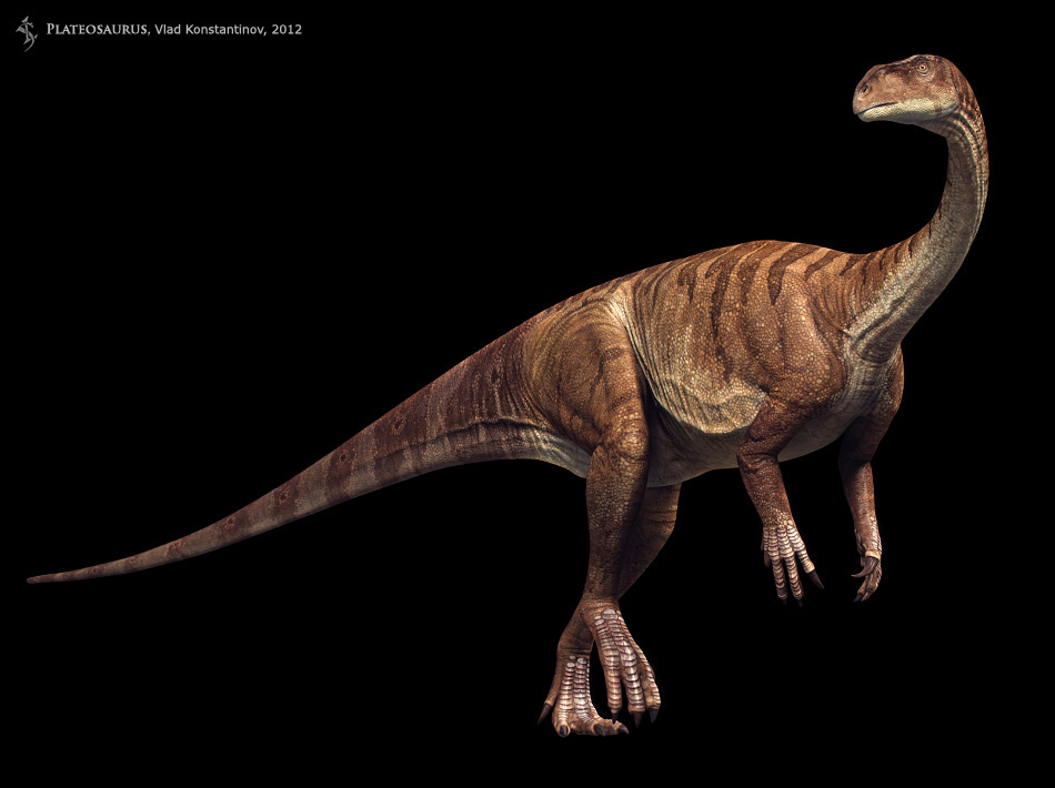 Walking With Dinosaurs 3d Wallpaper Plateosaurus Facts And Pictures