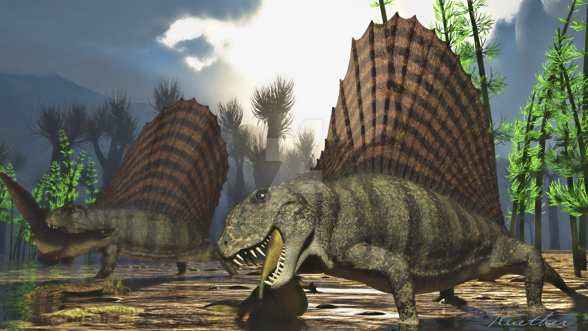 Hd Pigeon Wallpaper Dimetrodon Facts And Pictures