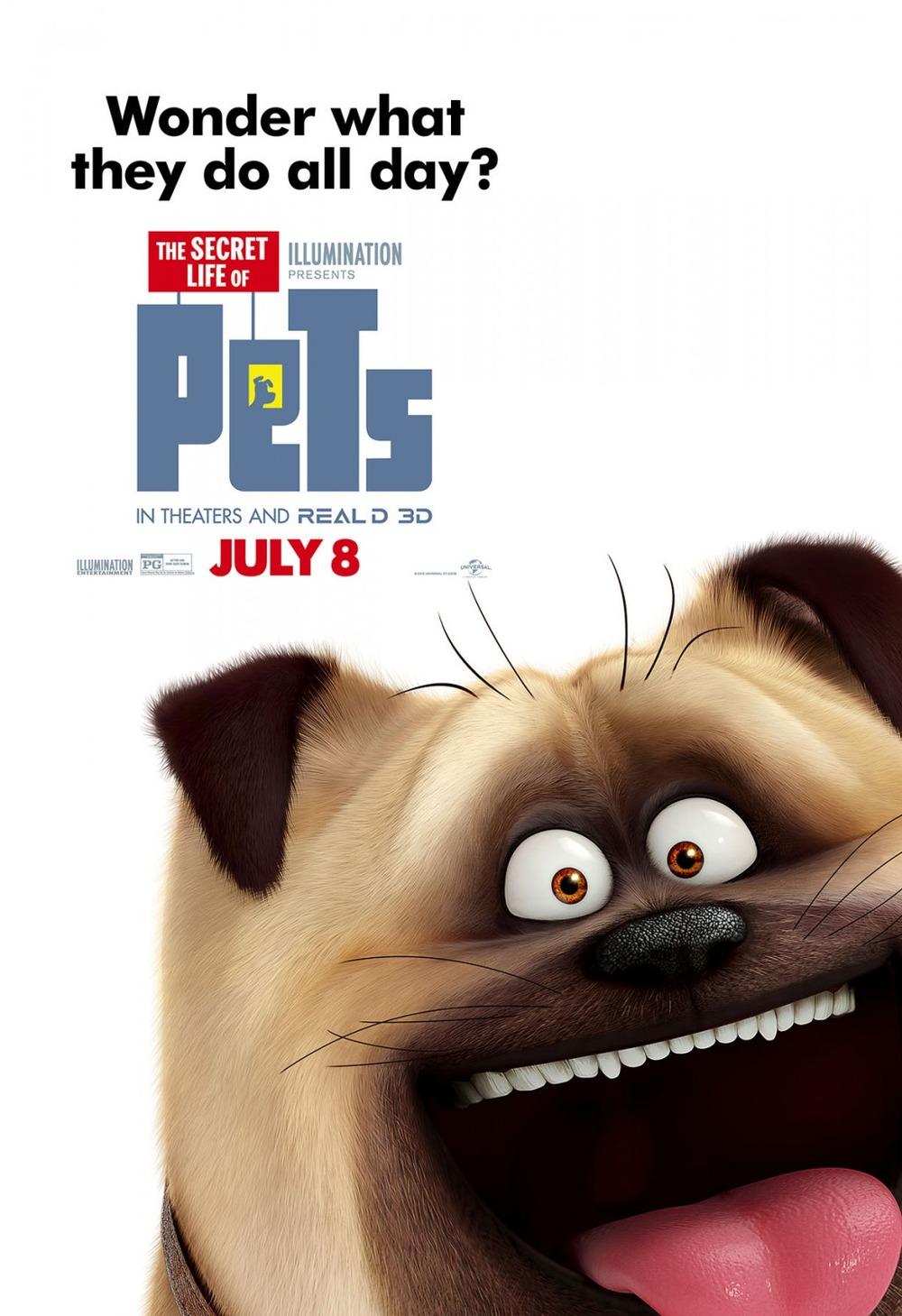 Danger 3d Wallpaper Download The Secret Life Of Pets Dvd Release Date Redbox Netflix