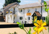 Dog Friendly Bed and Breakfast   Dog Friendly B&B   New Forest
