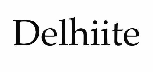 Delhiite_New_Love_Times