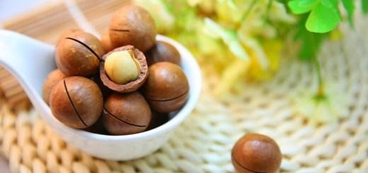 health benefits of macadamia nuts_New_Love_Times