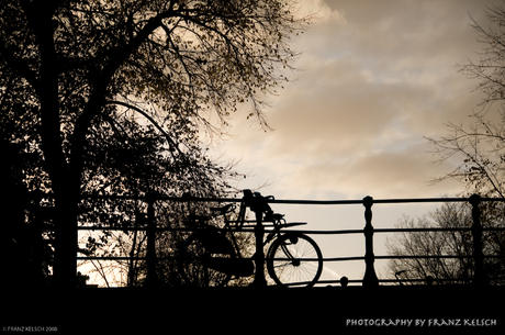 Biking Capital of the World