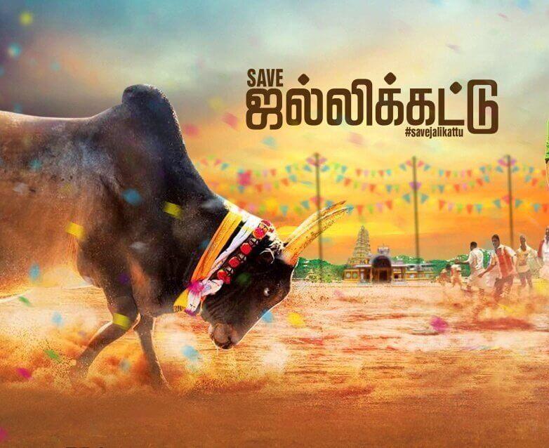 Telugu Movie Wallpapers With Quotes Jallikattu Images News Bugz