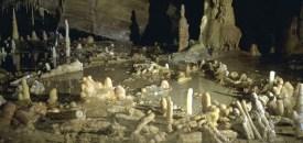 Waarom neanderthalers dit bouwwerk maakten is onduidelijk, maar waarschijnlijk was deze soort slimmer dan vaak wordt gedacht. Foto: Etienne Fabre/SSAC