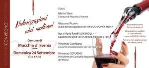 vino-interno-web