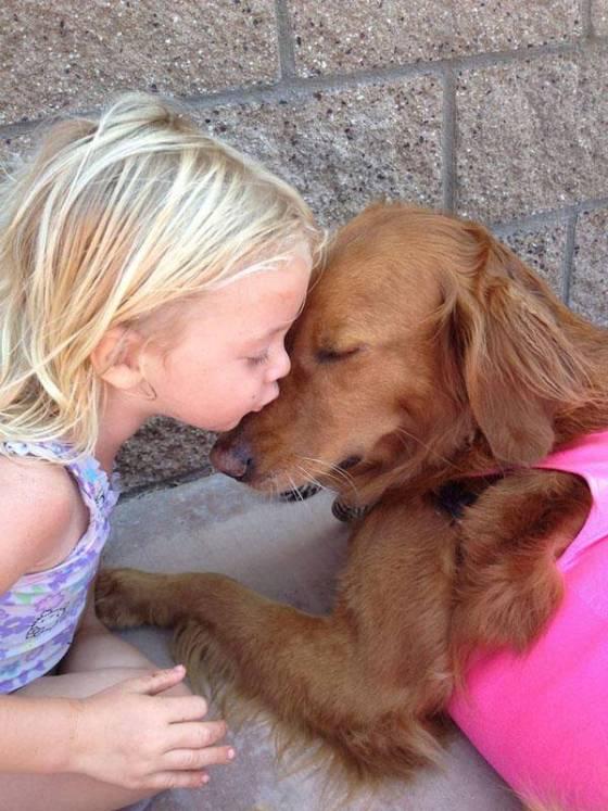 Σκύλος σέρφερ βοηθά άτομα με αναπηρία! (φωτογραφίες)