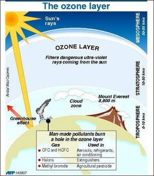 thesis statement for ozone depletion What would be a good thesis statement for a paper about global warming your thesis statement should be for those weird ozone depletion spots that seem.