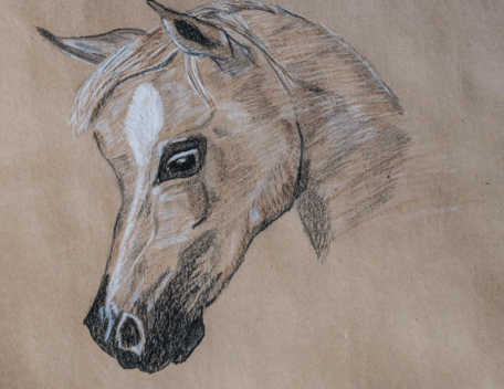 Maria, 14. Конь