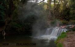 Hot river in the bush, Rotorua