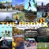 bronx-collage