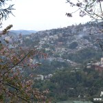 Kohima Travel Blog