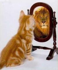 o_espelho