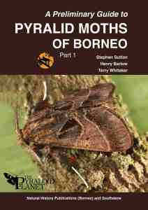 Pyralid Moths of Borneo