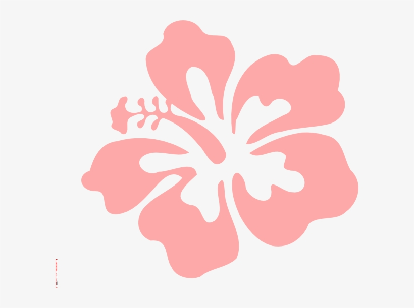 Coral Vector Printable - Hawaiian Flowers Transparent Background