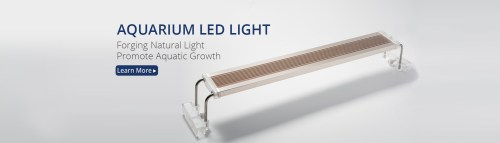 Medium Of Affordable Quality Lighting