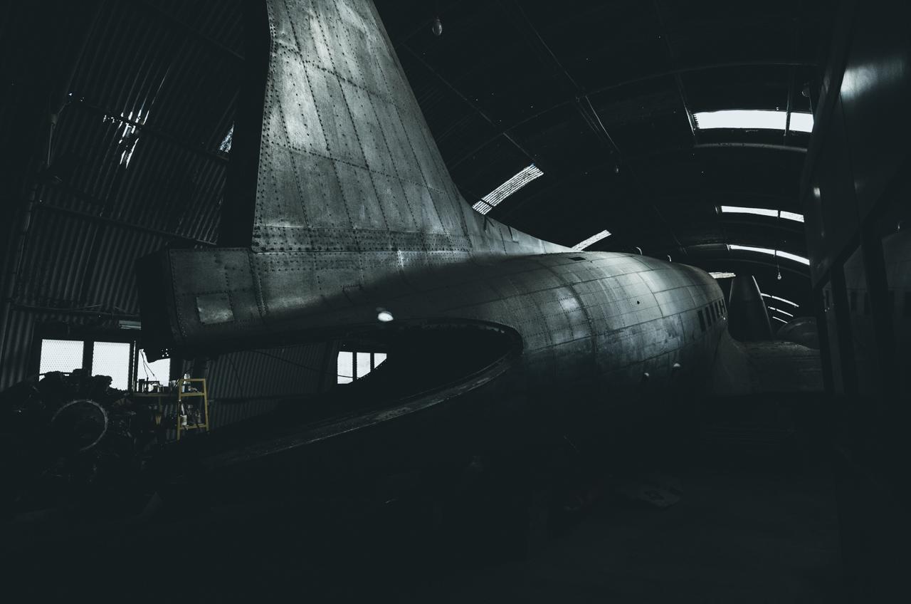 Aviacijos muziejus, beprotnamis ir gluosnis su gilėmis