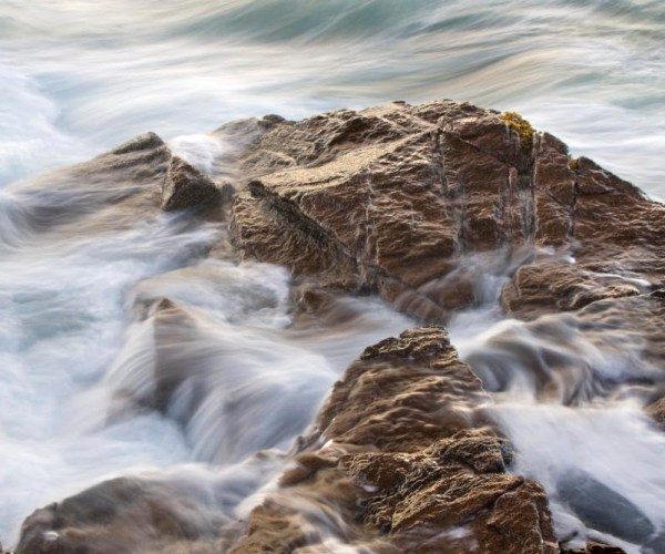 Rocky Shore Acadia National Park' by Cathrine Sasek