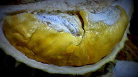 Buah durian - warna seindah rasa