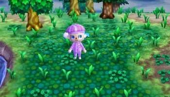 Animal Crossing New Leaf se met à jour! HNI_0032