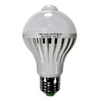 LED Smart Sound Light PIR Motion Sensor Detection Ball ...