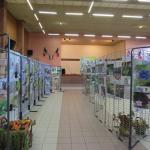 Exposition photo animaux en artois