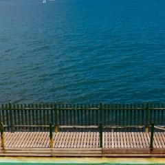 Sydney swimmer (454F5013)