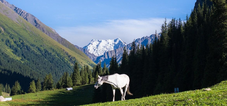 kyrgyzstan_altyn_arashan